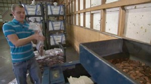 If Laws Change, 'Penny Hoarders' Could Cash in on Thousands