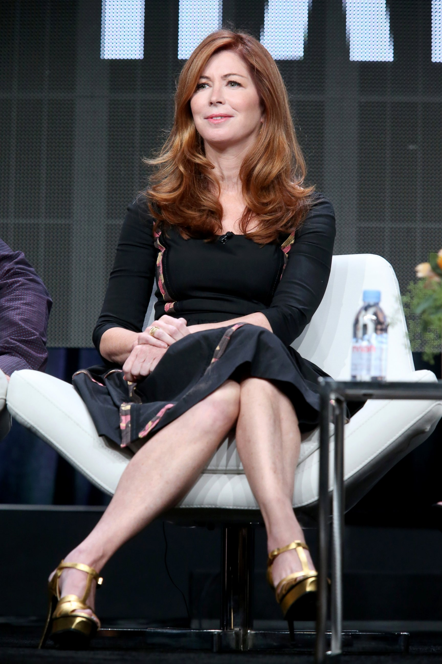 The 62-year old daughter of father Jack Delany and mother Mary Delany Dana Delany in 2018 photo. Dana Delany earned a  million dollar salary - leaving the net worth at  million in 2018