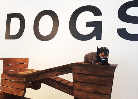 abc architecturefordogs2 nt 121205 Art Basel Week: From Dog Furniture to Audi Chairs