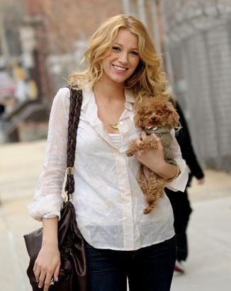 Blake Lively  on Gty Blake Lively Dog Ss Thg 120724 Ssv Jpg