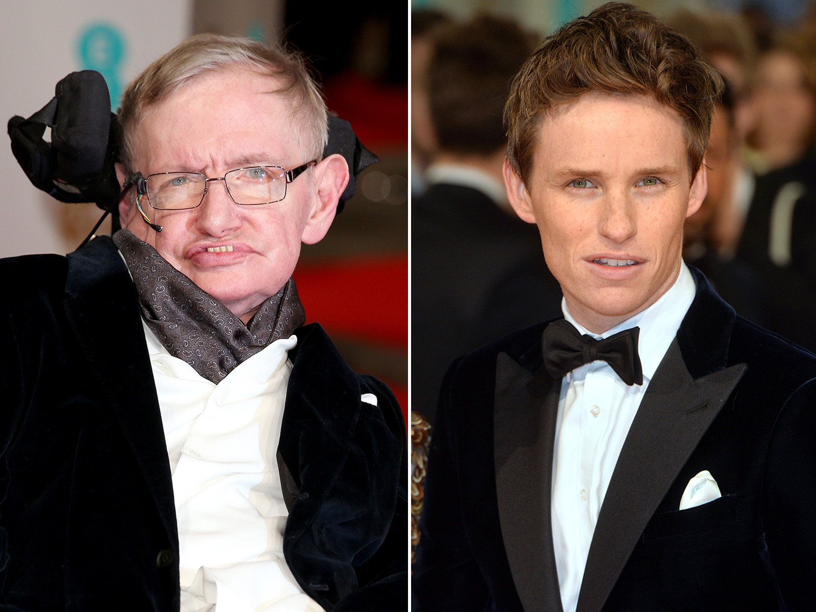 Stephen hawking eddie redmayne wedding pictures