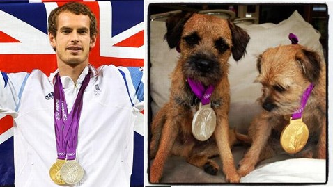 gty ht andy murray dogs wm dm 120806 wblog Andy Murrays Olympic Win Goes to His Dogs, on Twitter