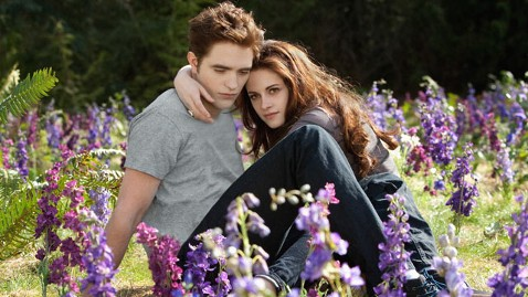 ht breaking dawn part 2 nt 130220 wblog Vote: Razzie Award for Worst Film of the Year