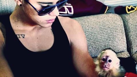 ht justin bieber monkey tk 130424 wblog Justin Bieber Hopes to Find New Home for Pet Monkey Held in Germany