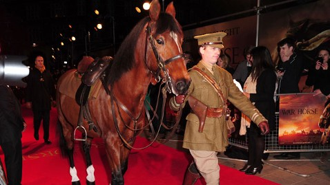 ht war horse premiere nt 120110 wblog Oscar Talk for Furry Film Stars
