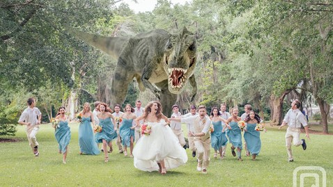 ht wedding dinosaurs nt 130529 wblog Terrified Wedding Party Gets Attacked by Giant T Rex