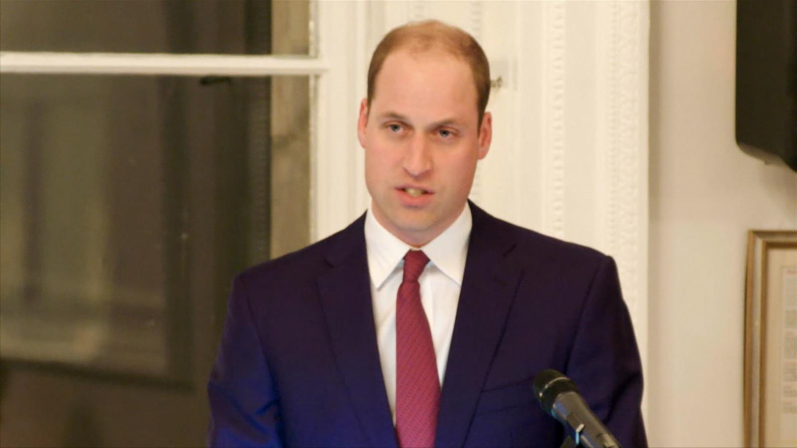 an analysis of the topic of the prince william A collection of over 50,000 educational videos on a wide variety of topics   center provides access to biographies, bibliographies and critical analysis of.