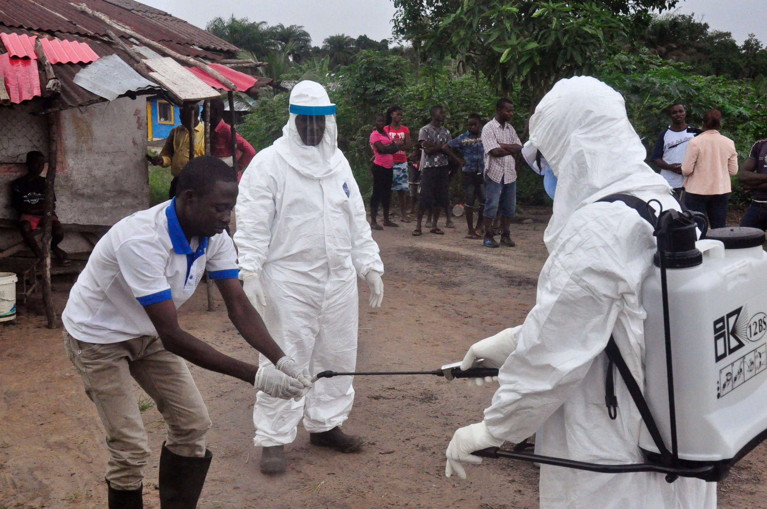 ebola virus what type of virus Ebola is the virus that causes ebola virus disease ebola virus disease is a serious illness that causes viral hemorrhagic fever and is deadly in up to 90 percent of cases ebola virus disease is a serious illness that causes viral hemorrhagic fever and is deadly in up to 90 percent of cases.