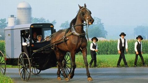 gty amish children dm 120507 wblog Amish Have Fewer Allergies Due to Farm Effect