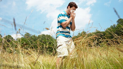 gty grass allergy jt 120423 wblog Cold or Allergies: How to Tell