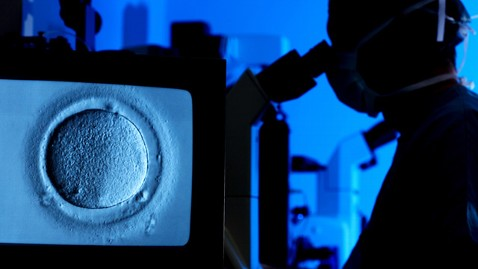 gty in vitro fertilization ll 111024 wblog In IVF, One Embryo Is Enough, Study Finds