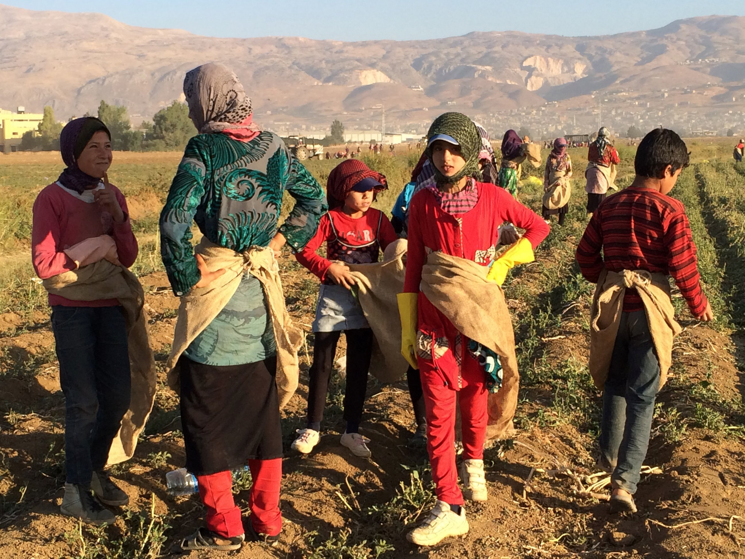 ABC girls getting ready to pick potatoes kab 140902 How You Can Help: Syrian Refugee Children