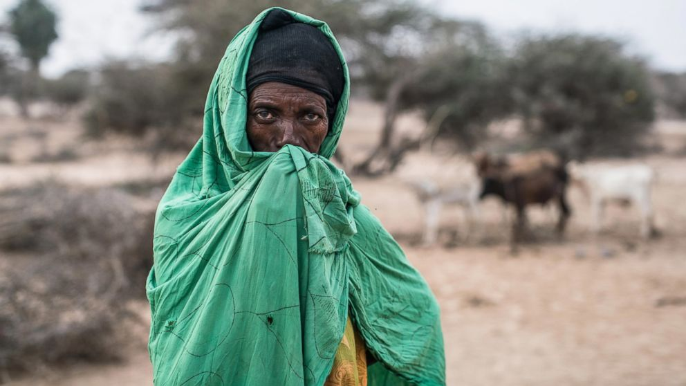 PHOTO: IDPs (Internally Displaced People) like Xasna Dahir have set up temporary camp outside Geerisa, one of the epicenters of the severe drought that hit northwestern Somalia last Spring.