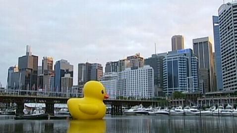 abc sydney duck kb 130103 wblog Giant Yellow Duck Takes Test Run in Sydney Harbor