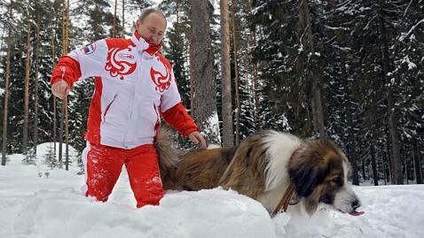 ap vladimir putin dog ll 130411 wblog Vladimir Putin, Puppies Frolic in Snow
