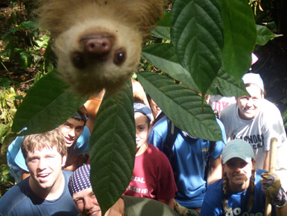 cn sloth photobomb ll 120330 main Sloth Photobomb: Furry Friend Creeps Into Picture