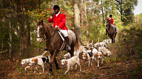gty south carolina fox hunt thg 111128 wblog Today in Pictures : Nov. 28, 2011