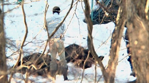 ht japan bear attack2 jp 120420 wblog Escaped Bears Maul Two Women to Death