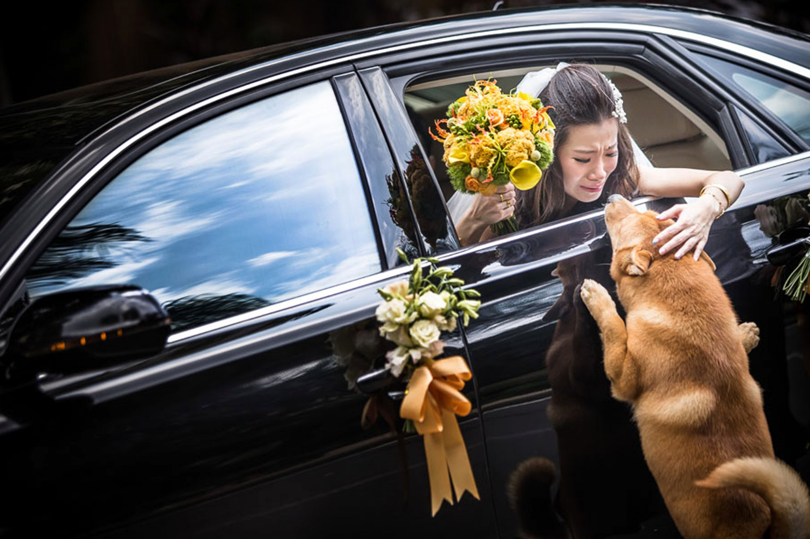 Risultati immagini per plus belles photos de mariage