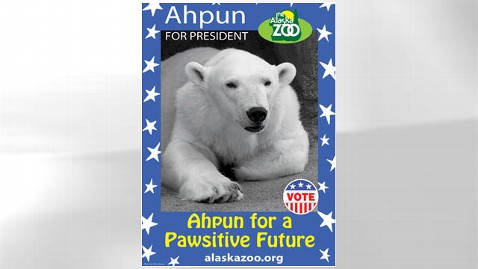 ht Ahpun slogan nt 120906 wblog Alaska Zoo Holds Own Presidential Race