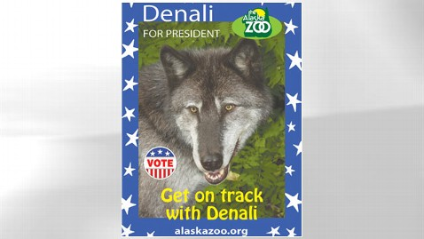 ht Denali slogan nt 120906 wblog Alaska Zoo Holds Own Presidential Race