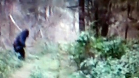 ht bigfoot jef 120824 wblog Bigfoot Sighting or Big Joke? You Decide