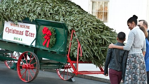 gty michelle obama white house christmas tree ll 111125 wblog Wis. Balsam Fir Becomes White House Christmas Tree