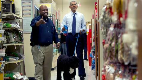 gty obama bo shopping jef 111224 wblog Does First Dog Bo Have a Dog Double?
