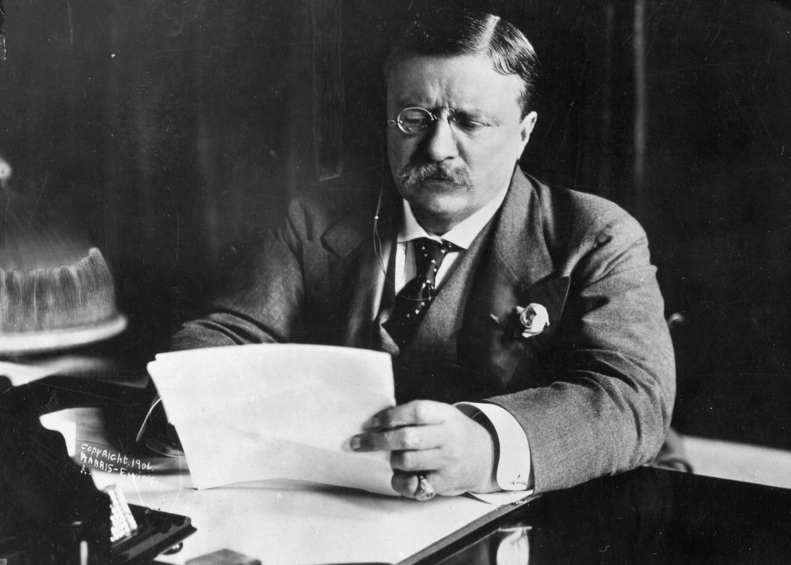 President Theodore Roosevelt received the Nobel Peace Prize in 1906 for having negotiated peace in the Russo-Japanese war in 1904-5.
