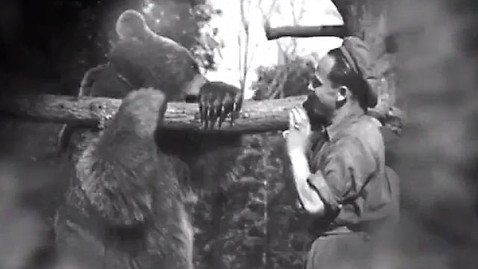 ht bear mr 120713 wblog Honoring Wojtek the Bear Who Fought the Nazis