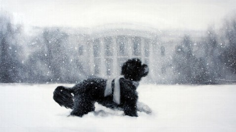 ht white house holiday card dm 121206 wblog Story Behind 2012 White House Holiday Card