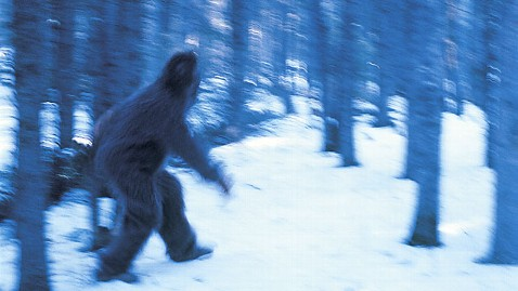 gty yeti big foot nt 120524 wblog Bigfoot, Yeti Hair Samples Requested for DNA Analysis at Oxford