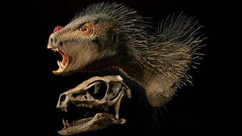 ht Heterodontosaurus nt 121003 wblog World News Behind the Scenes: 10/4/2012