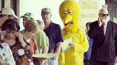 ht big bird votes kb 121106 wblog Big Bird and a Gorilla Get Out the Vote