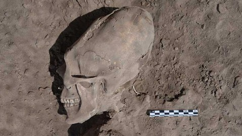 Alien Skulls Found in Mexico