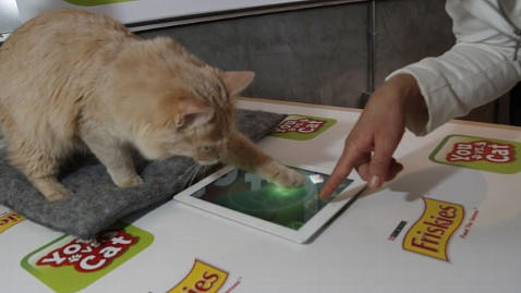 ht friskies cat ipad game lt 120312 wblog SXSW: New iPad Game Pits Owner Against Cat