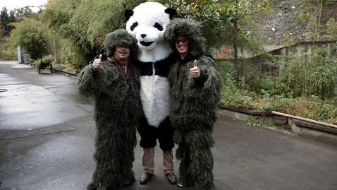 ht panda study 2 jp 112811 wblog Panda monium: Chinese Researchers Don Panda Suits To Study Pandas