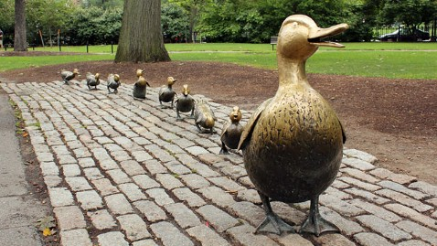gty ducklings tk 120417 wblog 9 Reasons Travelers Love Boston
