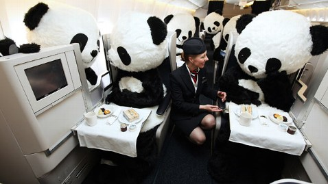 ht british airways panda1 tk 130612 wblog Giant Pandas Fly on BA
