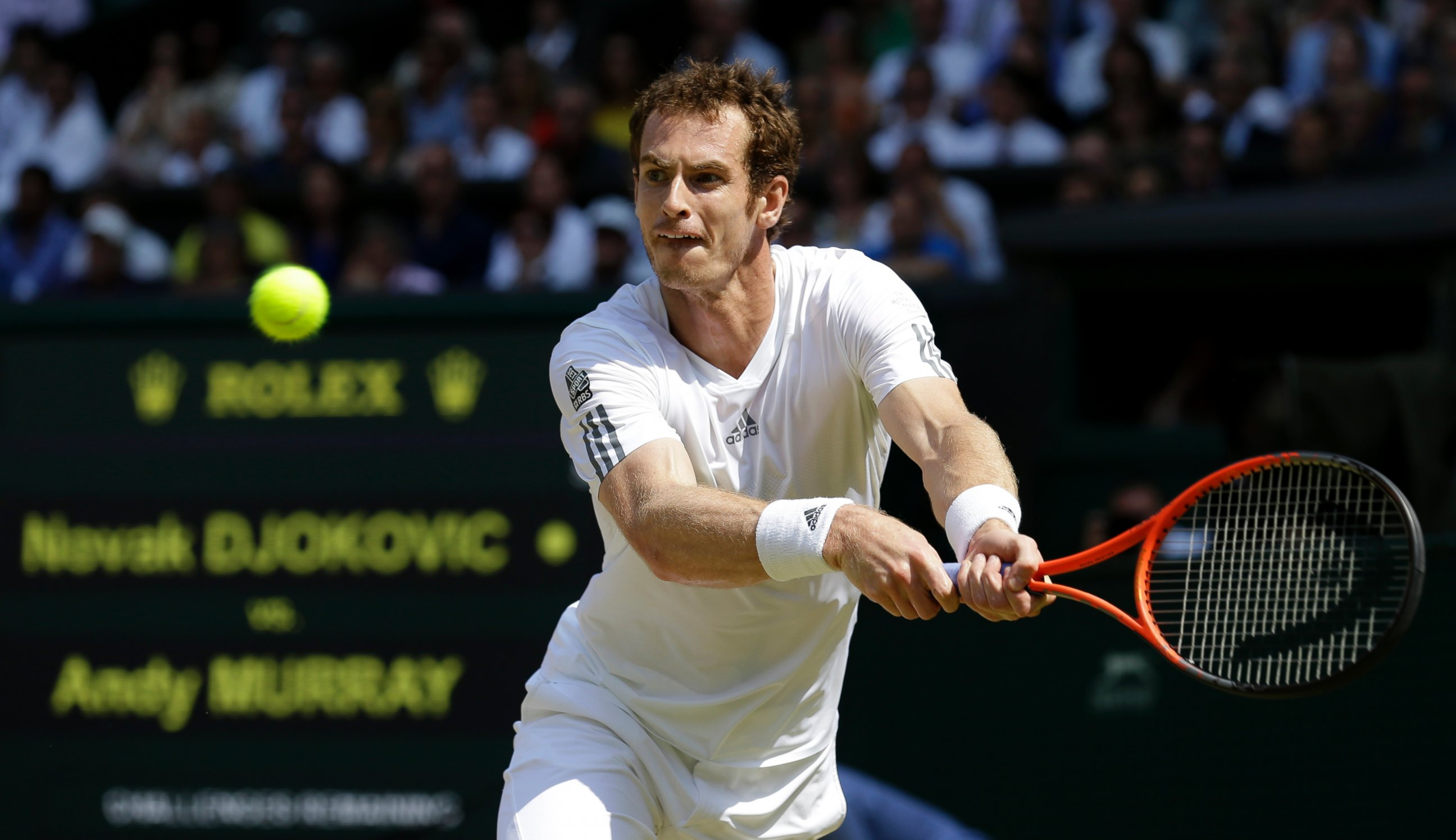 AP andy murray wimbledon jt 130707 2013 Wimbledon Champ Andy Murrays Lucky Number Seven