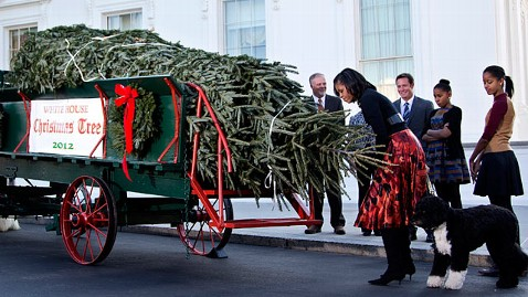 ap michelle obama dm 121123 wblog White House Christmas Tree Arrives