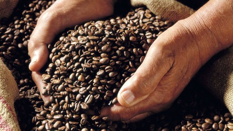 gty coffee beans jef 121112 wblog Instant Index: Lance Armstrong Severs Livestrong Ties, Pepsi Introduces Fat Blocking Soda