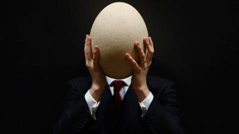 gty elephant bird egg mi 130328 wblog Instant Index: Bear Craves Chinese Food; Largest Egg Ever Laid