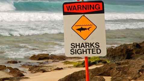 gty shark warning sign nt 121130 wblog Shark Attacks Oregon Man in Hawaii
