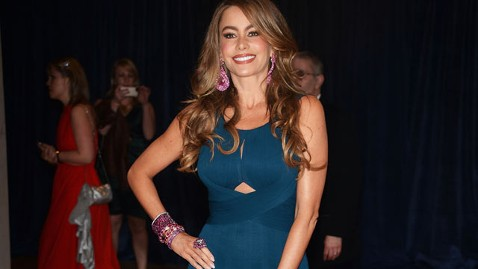 gty sofia vergara kb 130427 wblog Celebrities Hit Red Carpet at White House Correspondents Dinner