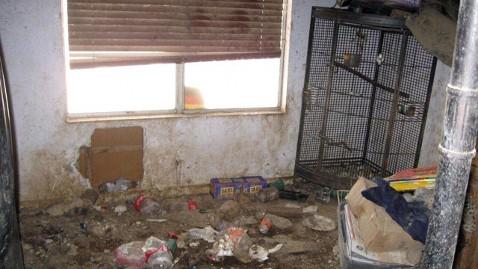 ht animal hoarding home jef 120202 wblog Animals Seized in Extreme Hoarding Case