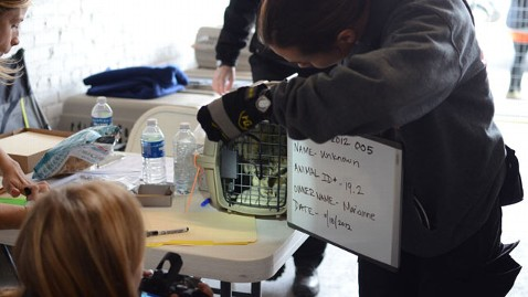 ht aspca pet sandy shelter reclaim lpl 130103 wblog ASPCA Helps Sandy Victims Reclaim Missing Pets From Superstorm