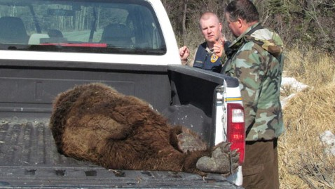 Alaska Man Fights Off Bear, Walks Away with Minor Injuries