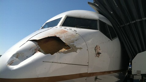 ht bird strike ll 120731 wblog United Airlines Flight Strikes Bird on Descent to Denver