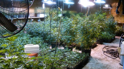 ht marijuana factory kb 130604 wblog Feds Say Scarsdale Mom Is Real Life Weeds Suspect